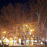 Ծառերը՝որպես բնության հուշարձանները