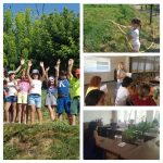 Մանկավարժական բաց ճամբար. օր երկրորդ